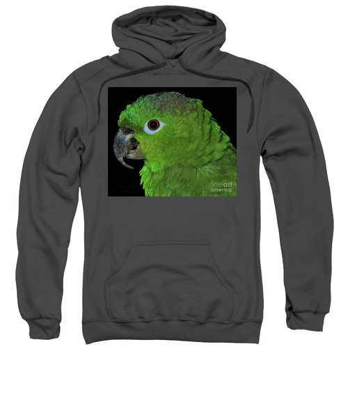 Mealy Amazon Sweatshirt