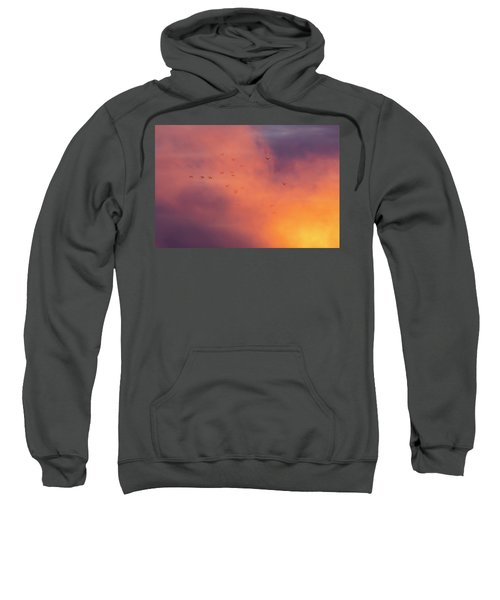 Mergansers At First Light 2019 Sweatshirt