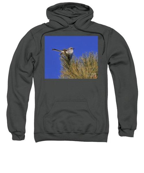 Mockingbird In White Pine Sweatshirt