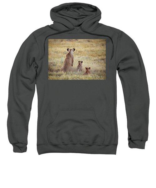 Mom And Cubs Sweatshirt