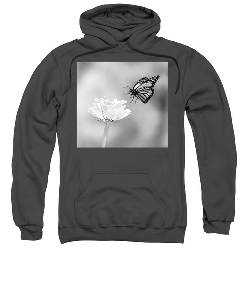 Monarch In Infrared 6 Sweatshirt