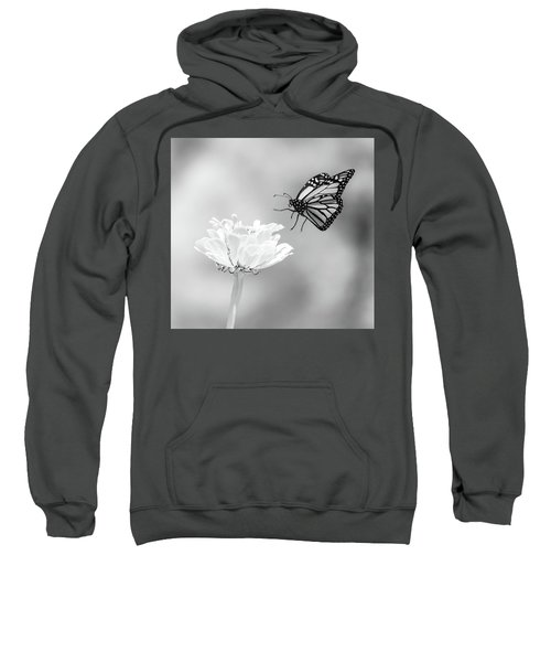 Monarch In Infrared 6 Sweatshirt
