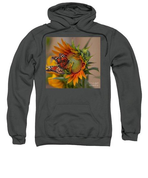 Monarchs And Sunflower Sweatshirt