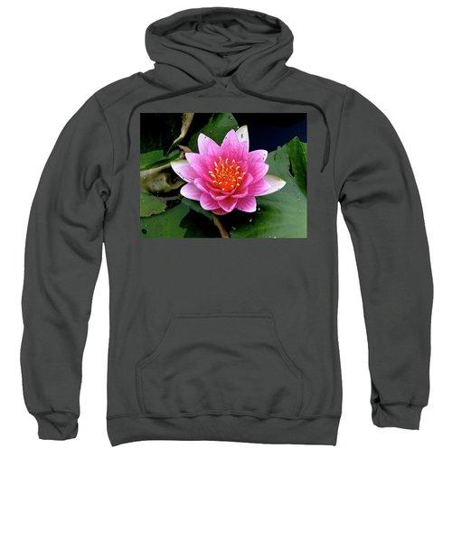 Monet Water Lilly Sweatshirt