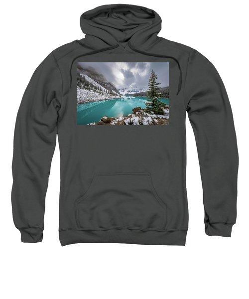 Moraine Lake Tree Sweatshirt