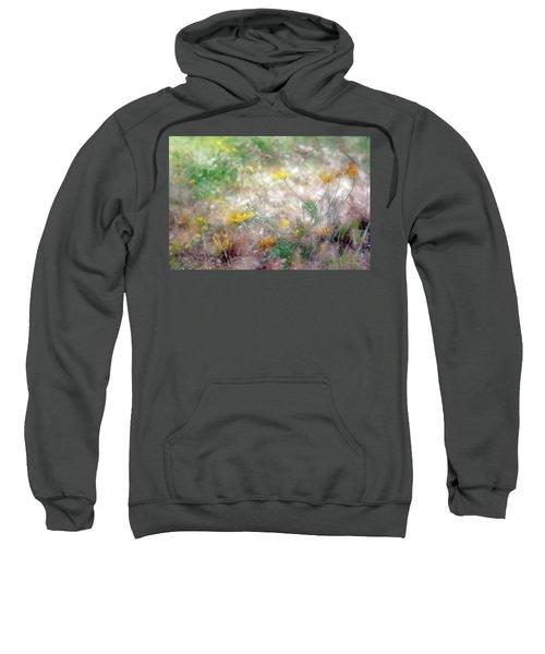 Morning Impressions Of Jaffa 2 Sweatshirt