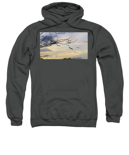Morning Sky View Sweatshirt