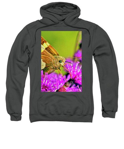 Moth On Purple Flower Sweatshirt