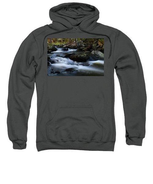 Movement Sweatshirt