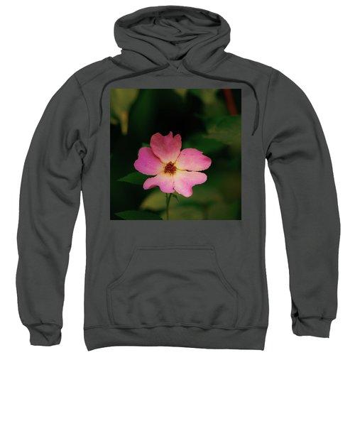 Multi Floral Rose Flower Sweatshirt