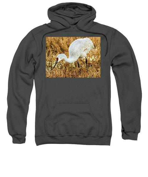 Munching Sandhill Crane Sweatshirt