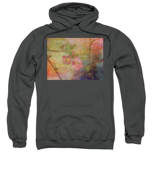 Muted Primaries 8844 Idp_2 Sweatshirt