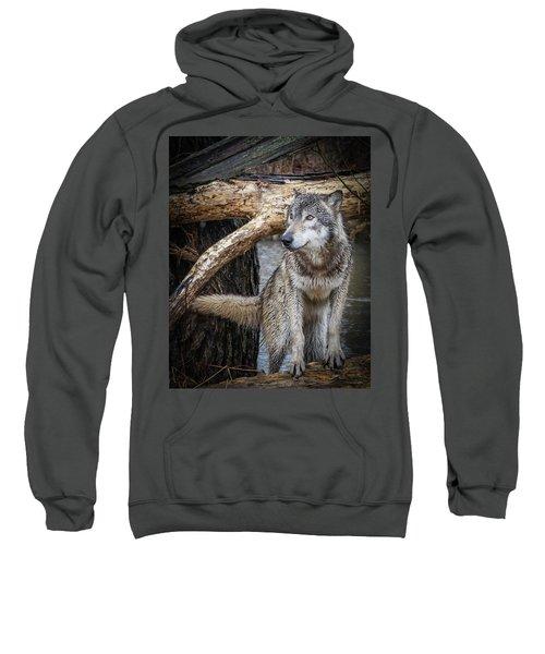 My Favorite Pose Sweatshirt