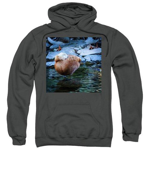 Napping At The Pond Sweatshirt