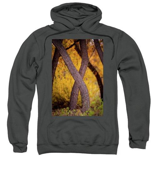 Nature's Font Sweatshirt