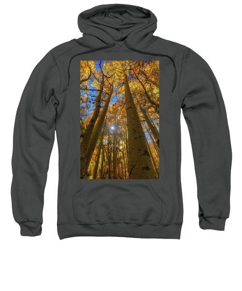 Natures Gold Sweatshirt