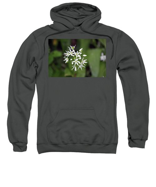 Neston. Wild Garlic. Sweatshirt