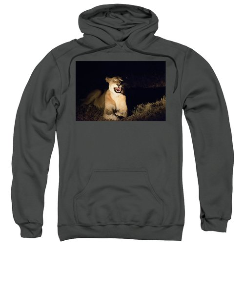 Nightmare Lioness Sweatshirt