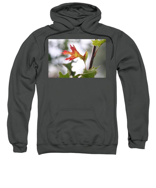 Oak Leaf Turning Sweatshirt