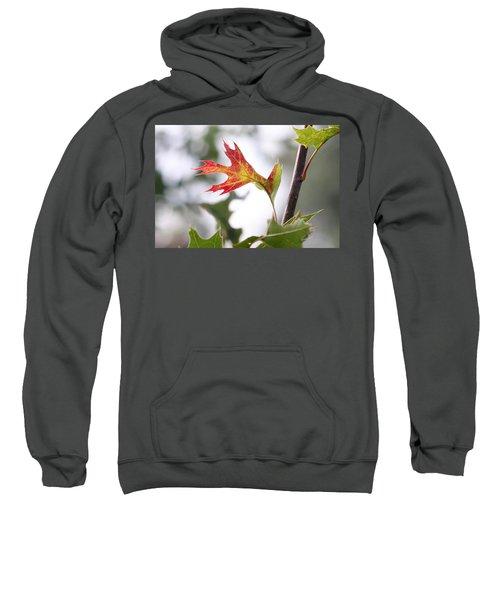 Oak Leaf Turning Sweatshirt