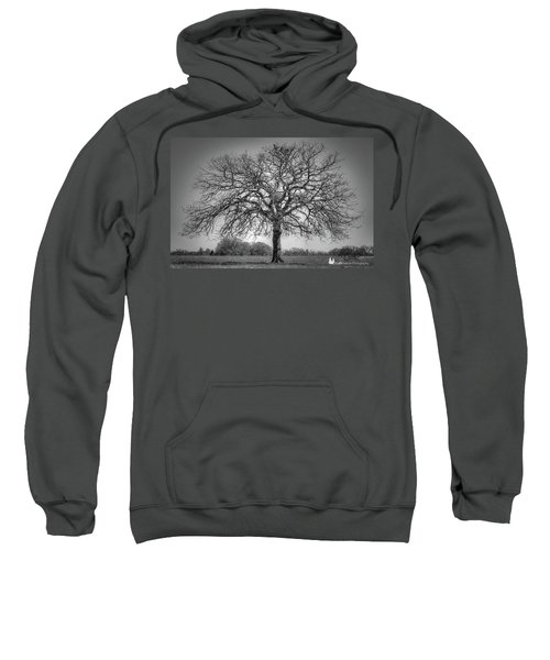 Old Oak Sweatshirt