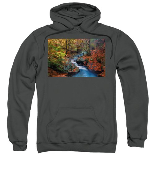 Sweatshirt featuring the photograph Old River by Evgeni Dinev