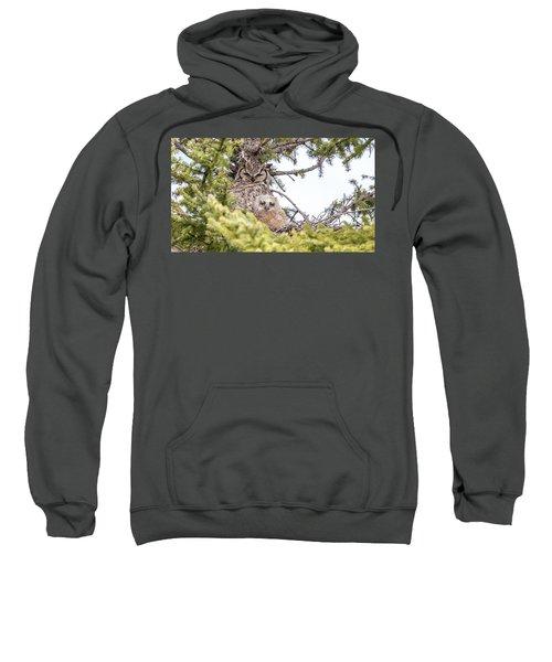 One Of Two  Sweatshirt