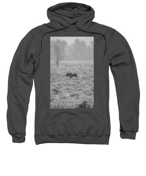 Onset  Sweatshirt