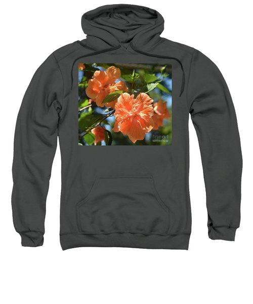 Orange Beauty - Hibiscus Sweatshirt