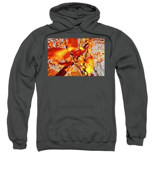 Orange Fall Leaves Sweatshirt
