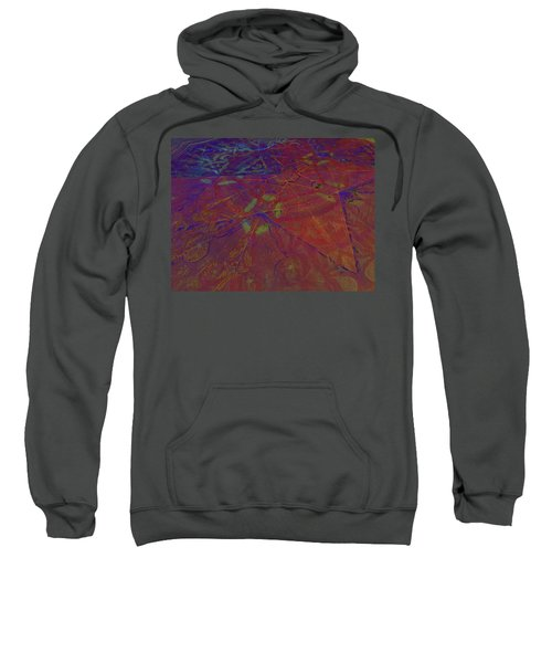 Organica 5 Sweatshirt