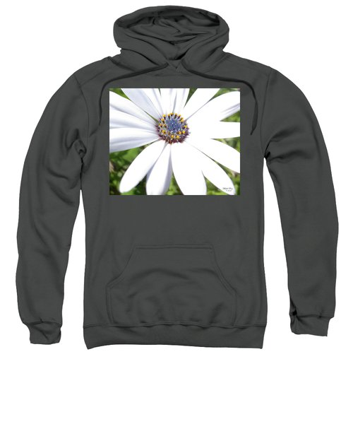 Page 13 From The Book, Peace In The Present Moment. Daisy Brilliance Sweatshirt