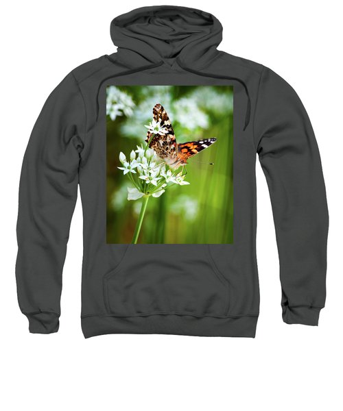 Painted Lady II Sweatshirt