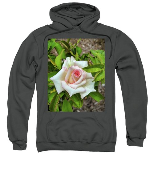 Pale Rose Sweatshirt