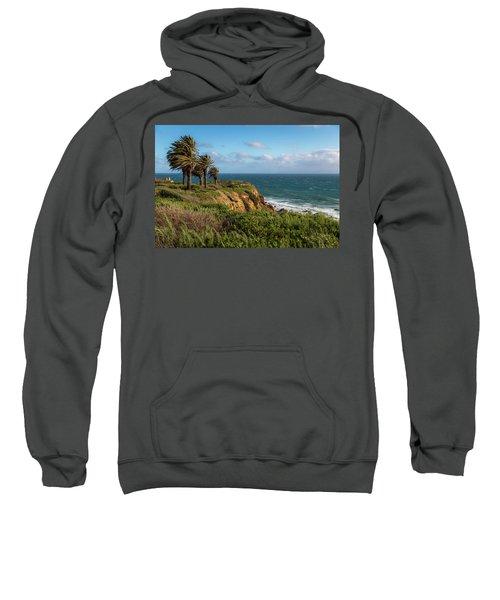 Palm Trees Blowing In The Wind Sweatshirt