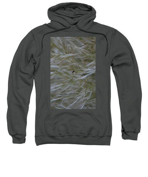 Pampas Grass And Insect Sweatshirt
