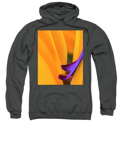 Paradise Bird Sweatshirt