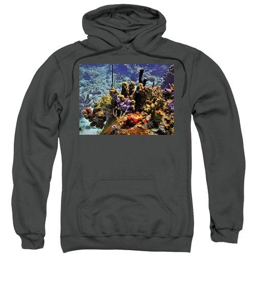 Patch Reef Bluff Sweatshirt