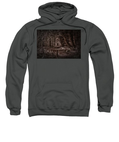 Path In Forest #i0 Sweatshirt