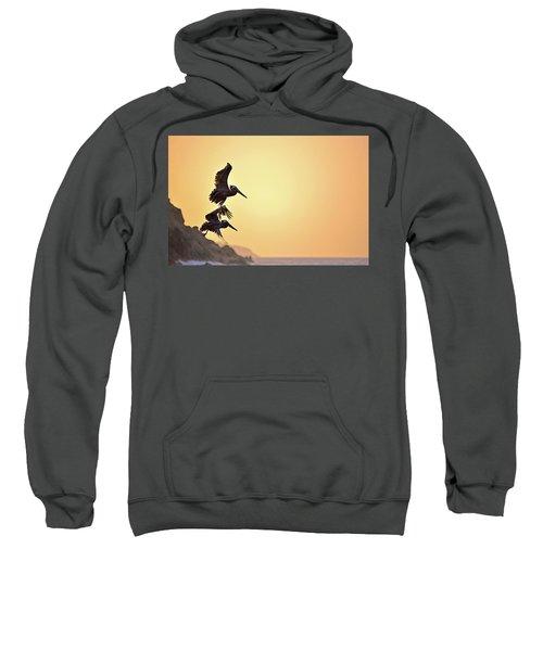 Pelican Down Sweatshirt