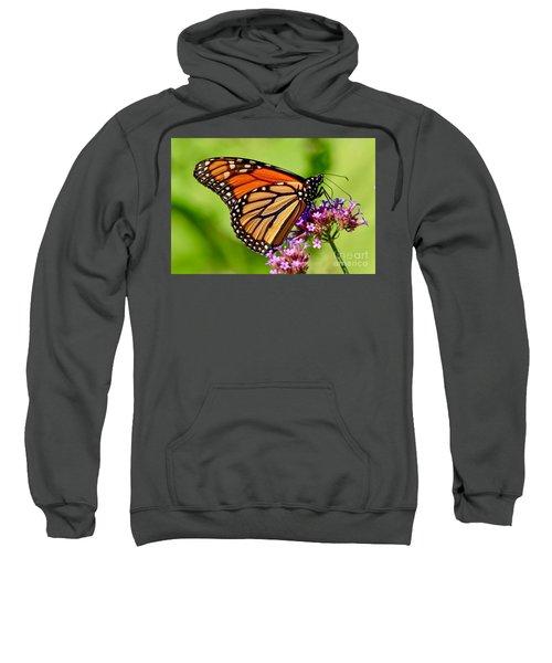 Perfect Monarch Sweatshirt