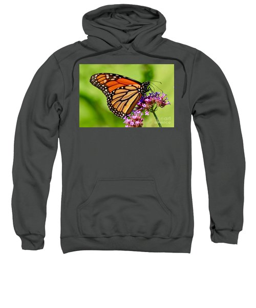 Perfect Monarch Sweatshirt