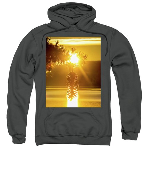 Pine Cone Fire Sweatshirt