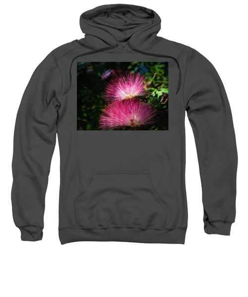 Pink Light Sweatshirt