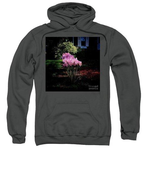 Pink Sunlit Flowers In The Neighborhood Sweatshirt