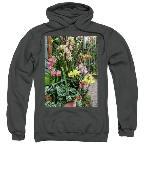 Plentiful Orchids Sweatshirt
