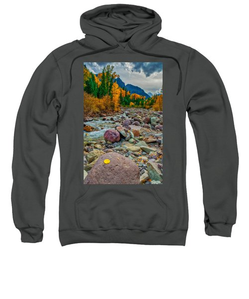 Point Of Color Sweatshirt