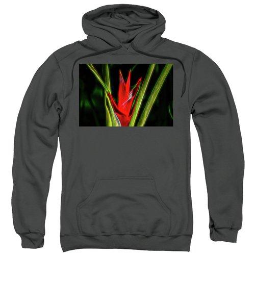 Points Of Light Sweatshirt