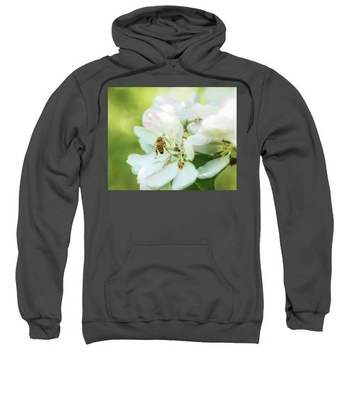 Pollen Gathering Sweatshirt