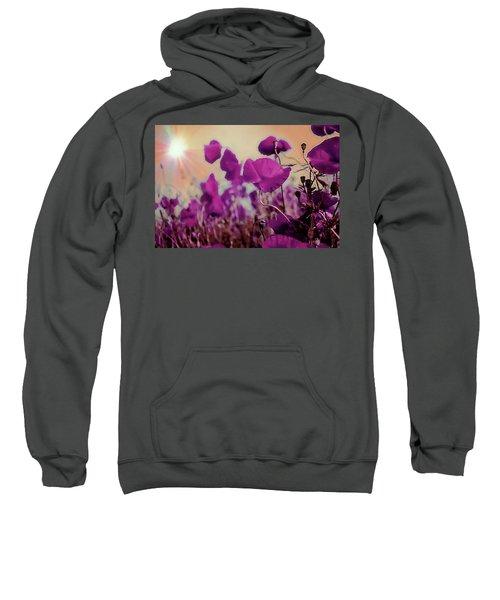 Poppies In Sunlight Sweatshirt